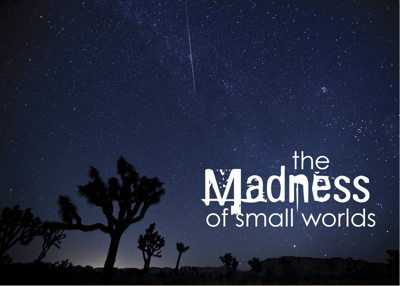 The Madness of Small Worlds