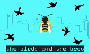 The Birds and the Bees Sleeping Weazel homepage